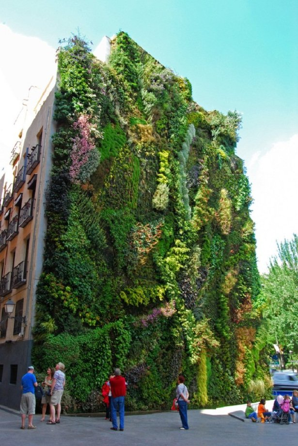 Vertical Garden. By Patrick Blanc in Madrid, Spain.